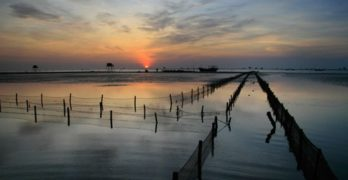 Đăng ký lắp đặt cáp quang FPT tại Thái Bình.